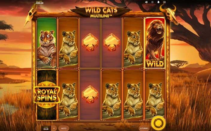 Wild Cats Multiline MUST DROP